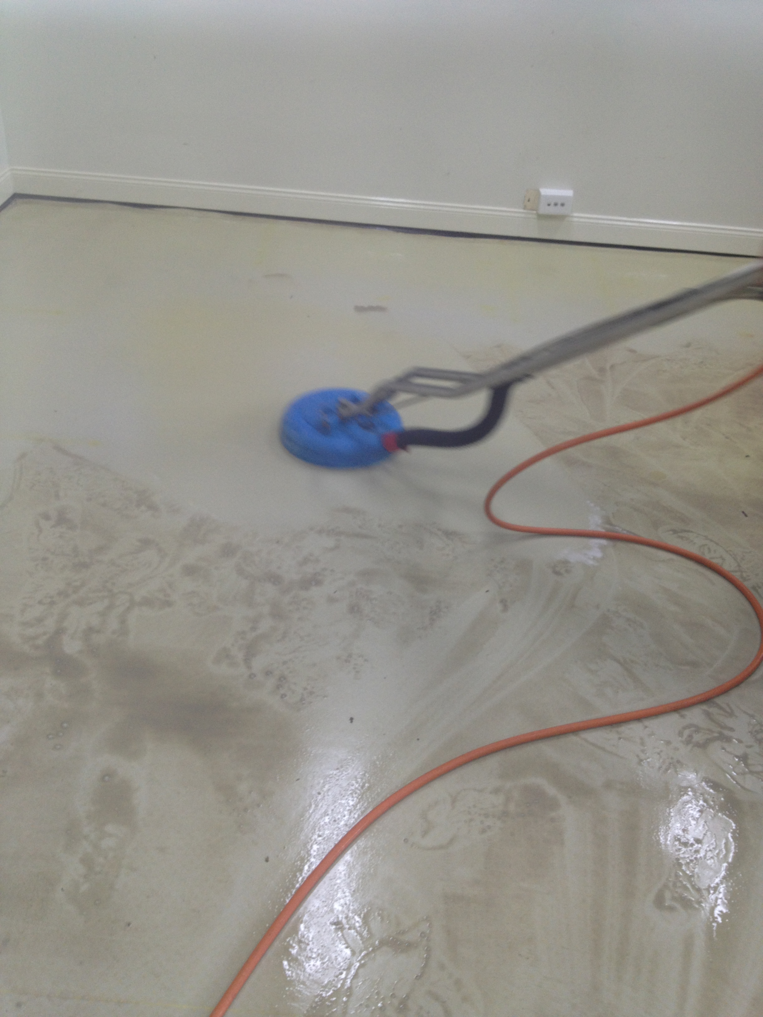 Vinyl striping sealing all carpet care gold coast for Can you seal vinyl flooring